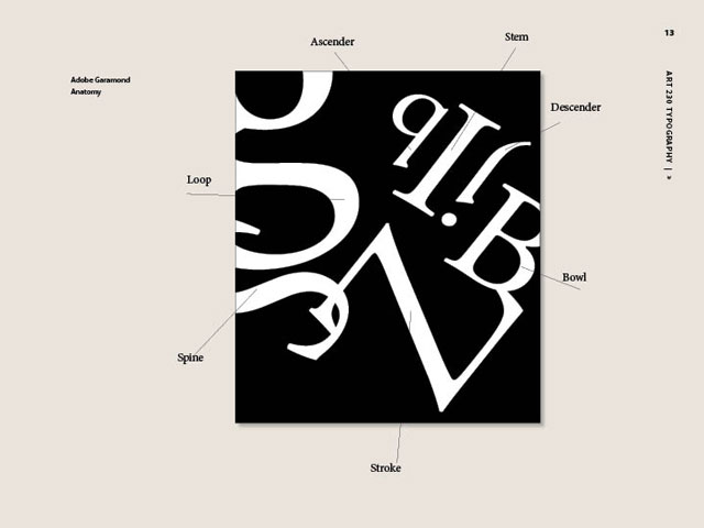 This illustration shows the anatomical parts of the different letters in the Garamond font.